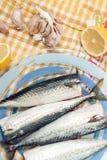 Raw mackerel fish. On a plate Royalty Free Stock Image