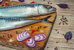 Raw mackerel fish on a wooden cutting board with spices. – red onion, basil leaves, chili peppers and peppercorn Royalty Free Stock Photography
