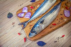 Raw mackerel fish on a wooden cutting. Board with spices – red onion, basil leaves, chili peppers and peppercorn Royalty Free Stock Photography