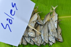 Raw mackerel on fresh banana leaf for sale in market. Raw mackerel on fresh banana leaf for sale in the market Stock Photography