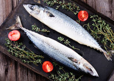 Raw mackerel on old black metallic oven tray. Raw mackerel with thyme and tomato on old  black metallic oven tray Royalty Free Stock Photography