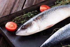 Raw mackerel on old black metallic oven tray. Raw mackerel with thyme and tomato on old  black metallic oven tray Royalty Free Stock Photo