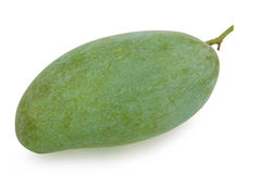 Raw mango Stock Photography