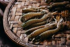 Raw mantis prawn close up at asian street market Royalty Free Stock Images