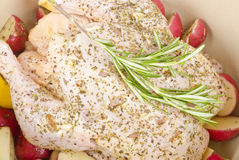 Raw Marinated Chicken in Dutch Oven #1 Stock Image