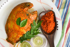 Raw marinated pearl spot fish ready for frying from Kerala India Stock Image