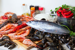 Raw marine products and  seasonings Royalty Free Stock Photography