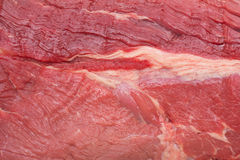 Raw meat stock image