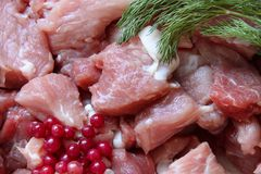 Raw meat background with dill and cowberries Stock Photo