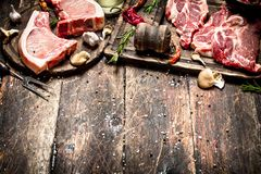 Raw meat background. Raw pork chop with a variety of herbs and spices. Royalty Free Stock Photography