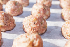 Raw meat balls Stock Image
