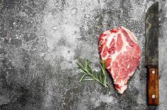 Raw meat of beef with rosemary. On rustic background Stock Images