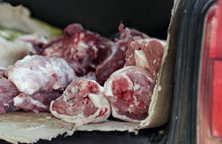 Raw Meat In Car Trunk. Pieces of raw meat laid in a car trunk, closeup, selective focus shot, concept of health control Stock Photos