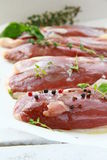 Raw meat, duck fillet with spices Stock Image