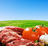 Raw meat and fresh vegetables Stock Image