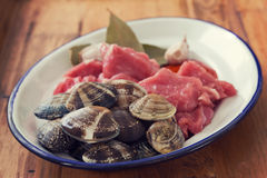 Raw meat with garlic and clams on dish Royalty Free Stock Image