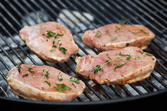 Raw meat on grill Royalty Free Stock Images