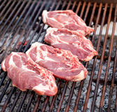 Raw meat on grill Stock Image