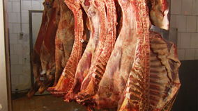 Raw meat stock video footage