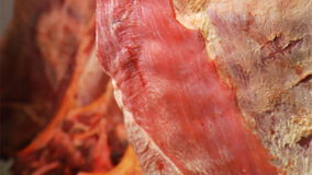 Raw meat stock video