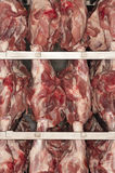 Raw Meat Hanging On Rack. Closeup of raw meat hanging on rack Royalty Free Stock Photo