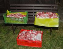 Raw meat. Individual cuts raw meat in crates Stock Images