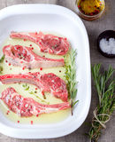 Raw meat, mutton, lamb rack with marinated Stock Photography