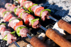 Raw meat skewers Royalty Free Stock Image