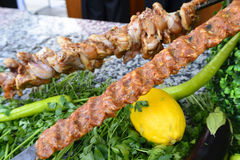 Raw meat on skewers of vegetables Stock Image