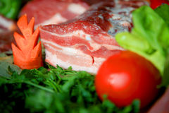Raw Meat wirh vegetables Stock Image