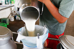 Raw milk Royalty Free Stock Image