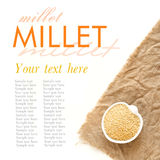 Raw millet in a bowl Royalty Free Stock Image