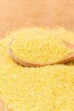 Raw millet Royalty Free Stock Photos
