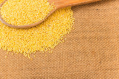 Raw millet Royalty Free Stock Images