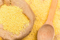 Raw millet Royalty Free Stock Photography