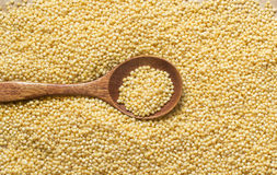 Raw millet with a spoon Stock Photos