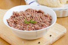 Raw minced meat. In white bowl Royalty Free Stock Images