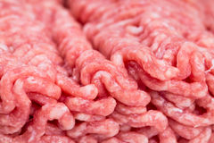 Raw minced meat close-up. Royalty Free Stock Images