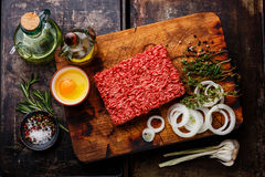 Raw Minced meat and condiments Stock Photography