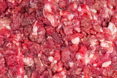 Raw minced meat Royalty Free Stock Images