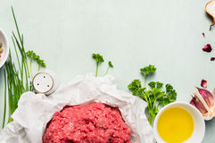 Raw minced meat with fresh ingredients Stock Images