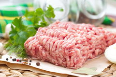 Raw minced meat with greens, spices and mushrooms. On the table Royalty Free Stock Photo