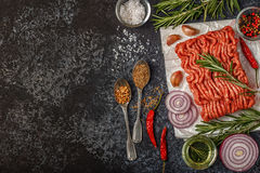Raw Minced Meat On Paper With Onion, Herbs And Seasonings On Black Background. Royalty Free Stock Image
