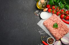 Raw minced meat on paper with fresh vegetables and spices on black background. Top view copy space Royalty Free Stock Image
