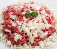 Raw Minced meat. Some raw minced meat with onions and basil Royalty Free Stock Images