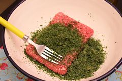 Raw Minced meat. Some raw minced meat of pork and beef Stock Images