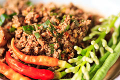 Raw minced meat Stock Image
