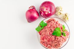 Raw minced meat in a plate on white background. Raw minced pork in a plate and fresh onion and garlic on a white backgound close-up. Top view Stock Image