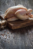 Raw mini Chicken Royalty Free Stock Image