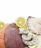 Raw mix of seafood with lemon on white background Stock Image